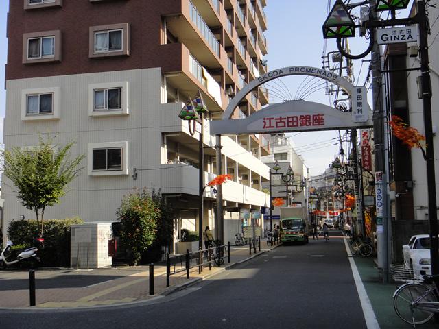 江古田銀座とマンション